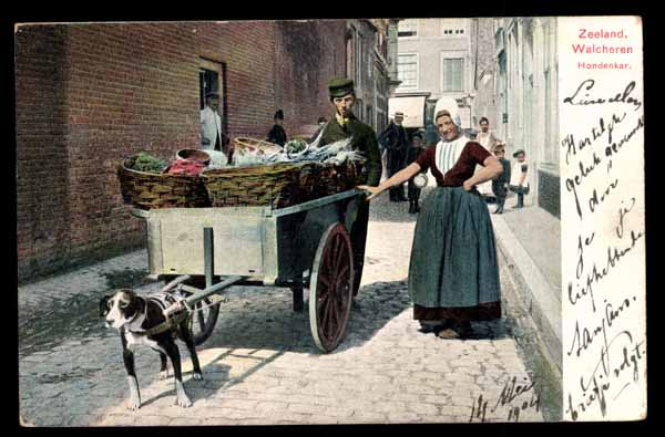 NETHERLANDS, Walcheren, DOG-CART, Zeeland