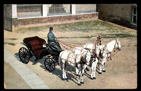 RUSSIA, Types russes, attelage, coach with horses