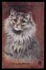"Artist WAIN,  cat, ""Chinchilla Persian"""