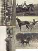 Lot of 5 postcards HORSE RACING, LES COURSES de chevaux, Jockey, France