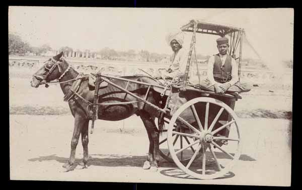 INDIA, cart with horse, REAL PHOTO postcard